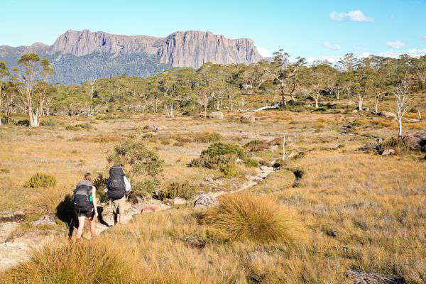 Cradle Mountain Huts Walk with Matilda Wand